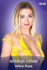 Natalia Starr/Yellow Rose